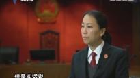 """[2018-01-28]权威访谈:陈海仪:迷途少年的""""法官妈妈"""""""
