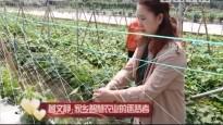 [2018-06-24]人间真情:曾文静:家乡智慧农业的逐梦者