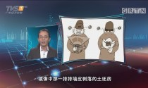 "[HD][2017-08-23]马后炮:台上喊廉台下捞钱 如何杜绝""双面人""的表演"