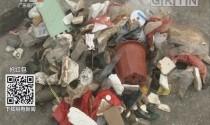 广州南沙:海洋垃圾触目惊心 志愿者自发清理