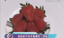 睩睩教你做草莓慕斯小蛋糕
