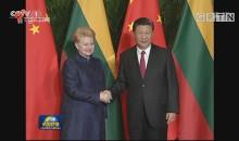 习近平会见立陶宛总统
