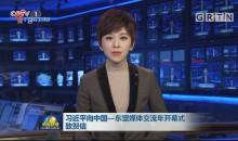 习近平向中国——东盟媒体交流年开幕式致贺信