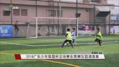 2018广东少年联盟杯足球赛东莞赛区圆满落幕