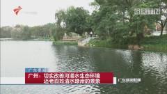 广州:切实改善河涌水生态环境 还老百姓清水绿岸的景象