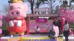 [2019-02-14]南方小记者:小记者之猪年说猪特别节目