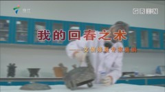 [HD][2019-10-28]文化珠江:我的回春之术——文物修复专家莫鹏
