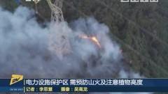 (DV現場)電力設施保護區 需預防山火及注意植物高度