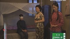 [2020-05-19]七十二家房客:刘定坚的婚事(下)