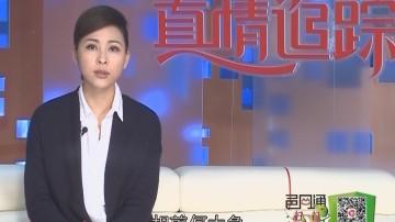 [2017-07-14]真情追踪:疯子三姐回家 为何包袱变成了香馍馍?