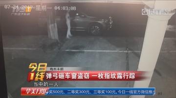 梅州丰顺:弹弓砸车窗盗窃 一枚指纹露行踪