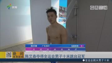 陈艾森夺得全运会男子十米跳台冠军