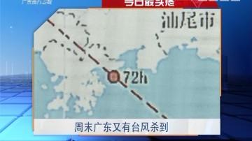 今日最头疼:周末广东又有台风杀到