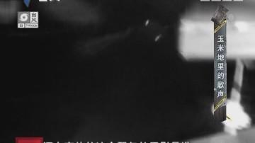 [2017-09-03]天眼追击:玉米地里的歌声