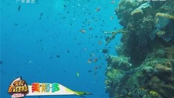 [2017-09-29]全民放轻松:世界十大海岛美食节 玩转潜水胜地美娜多