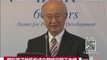国际原子能机构成立朝核问题工作组