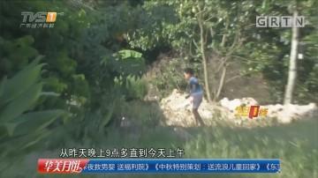 惠州惠阳田心围村:村民目击大型动物进村? 多部门调查