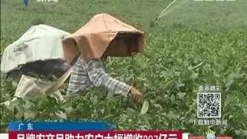 广东:品牌农产品助力农户大幅增收207亿元