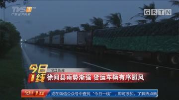 湛江徐闻:徐闻县雨势渐强 货运车辆有序避风