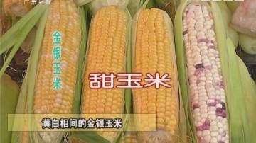 万能的玉米全身都是宝