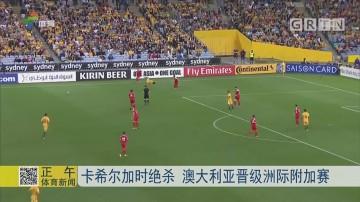 卡希尔加时绝杀 澳大利亚晋级洲际附加赛