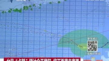 """台风""""卡努""""预计今天登陆 将正面袭击粤西"""