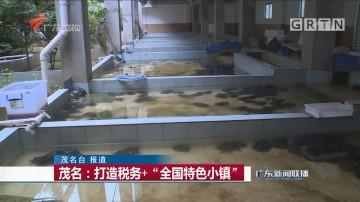 """茂名:打造税务+""""全国特色小镇"""""""