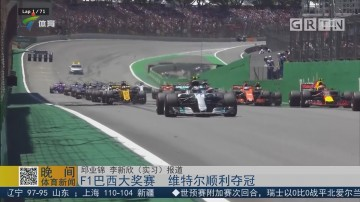 F1巴西大奖赛 维特尔顺利夺冠