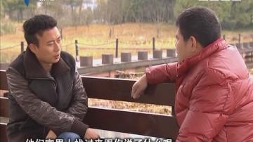 """[2017-12-01]法案追踪:痴爱初恋情人的""""妻子"""""""