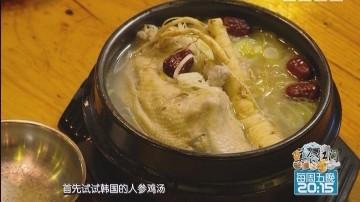 [2017-12-22]美食江门:人参鸡汤