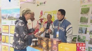 [2017-12-18]摇钱树:相约西塘稻草节