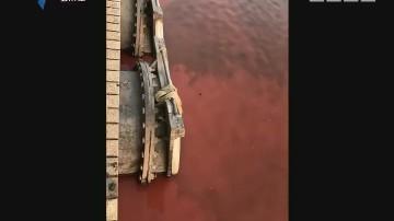 广州:黄埔涌水体变红 执法人员现场调查