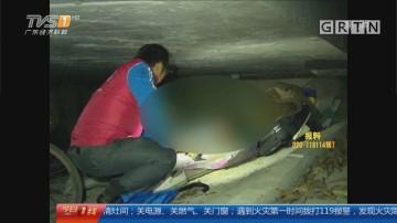 深圳:寒风中助寻亲 流浪24年一家喜相逢