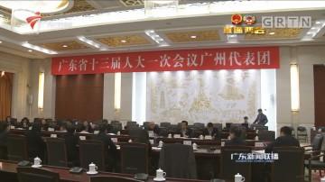 各代表团分组审议两院工作报告