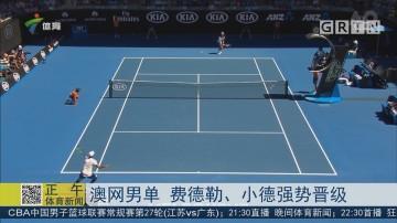 澳网男单 费德勒、小德强势晋级