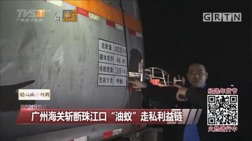 """广州海关斩断珠江口""""油蚁""""走私利益链"""