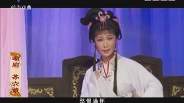 [2018-01-02]风雅潮韵:苏六娘