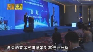 学习 贯彻 落实十九大精神系列片:首席经济学家首次谈2018年民生经济