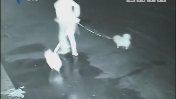 [2018-02-27]法案追踪:《法治之魅》系列节目之一条狗绳引发的血案