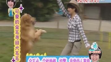 [2018-02-24]动物笑当家:动物也过年