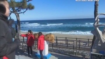 海洋列车开往韩国东海岸