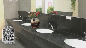 春运路上之厕所革命:新城服务区 气派园林建筑 到处是温暖