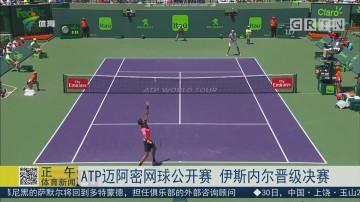 ATP迈阿密网球公开赛 伊斯内尔晋级决赛