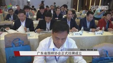 广东省围棋协会正式挂牌成立