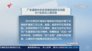 广东通报中央环保督察组移交问题 207名责任人被问责