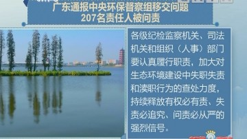 广东通报中央环境保护督察移交生态环境损害责任追究问题问责情况