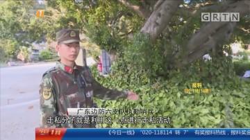 """深圳:墓地深夜""""闹鬼"""" 边防出击揭黑幕"""