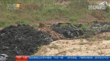 广州增城区:菜地如蹦床?地下现黑色疑似污染物