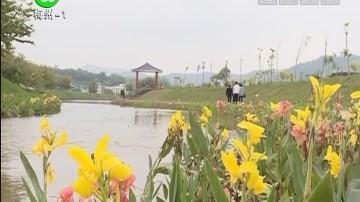 梅州:美丽新农村:南口侨乡村:乡村建设环境美翻了