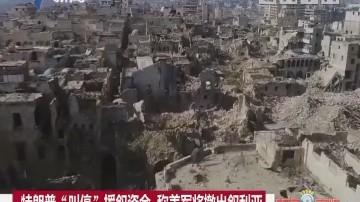 """特朗普""""叫停""""援叙资金 称美军将撤出叙利亚"""